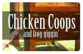 Chicken Coops & Frog Giggin'
